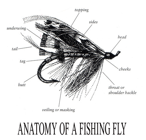Anatomy Of A Fishing Fly This Picture Is From An Irish