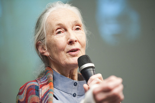 Jane Goodall Visits the World Bank | by World Bank Photo Collection
