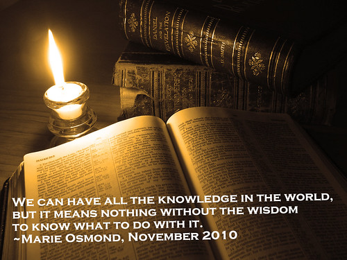 Knowledge without wisdom... (Credits: Michael Fisher / FlickR)