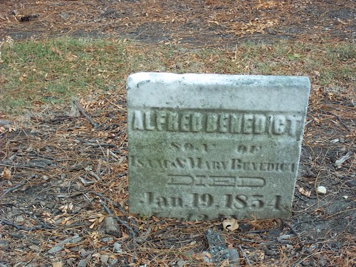 Pioneer Cemetery - Grave P | by Barrington Area Library Local History