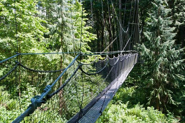 UBC Botanical Garden-8