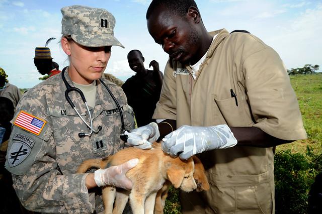 U.S. ARMY VETCAP