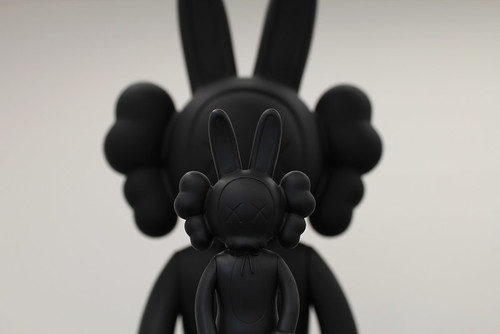 Kaws accomplice, will growing ! | by BFLV