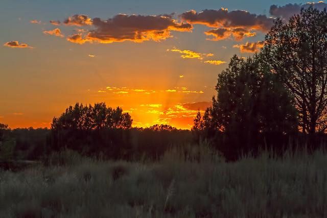 Sunset-W-4_7d1__090916