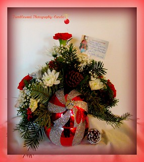 Thank You Nippak~ For this Beautiful Gift | by Tumbleweed Photography~Carol~