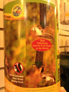 Most entertaining squirrel proof feeder | by selena marie