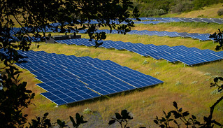 Solar Farm | by mcmees24