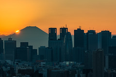 View of Shinjuku at sunset from Bunkyo Civic Center Observatory