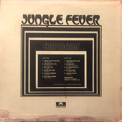 CHAKACHAS:JUNGLE FEVER(JACKET B)