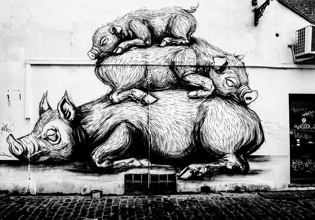 LAZY PIGS by ROA [STREET ART IN BRUSSELS]-123722