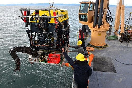 ROV Oceanic Explorer is recovered after connection multiple instruments to the S Node