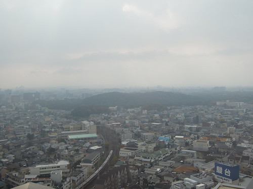 仁徳天皇陵 / 堺市役所展望台から