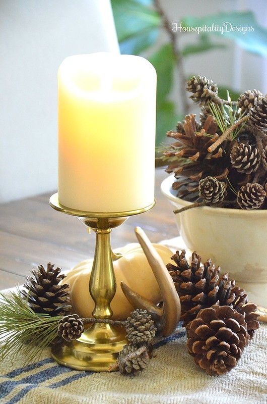 Fall Vignette - Antlers - Pinecones - Housepitality Designs