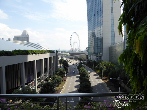 160909b MBS Marina Bay Sands to Gardens by the Bay _15