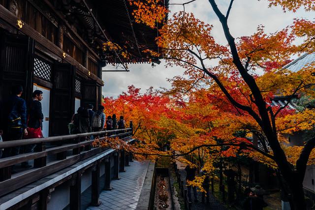 Kyoto_Eikando_17