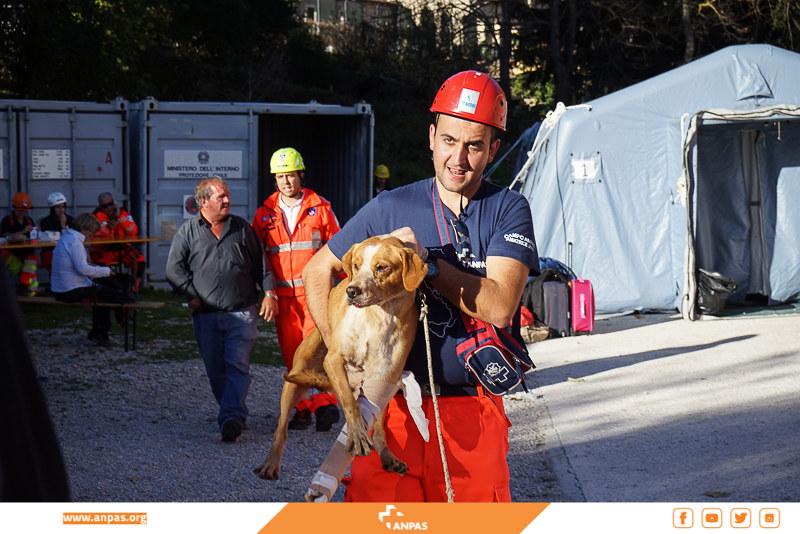 Norcia: l'assistenza dei volontari Anpas