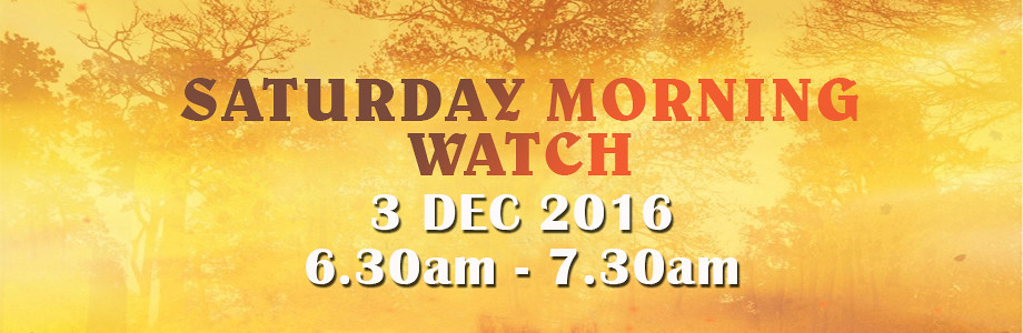 sat morn watch 26 nov web