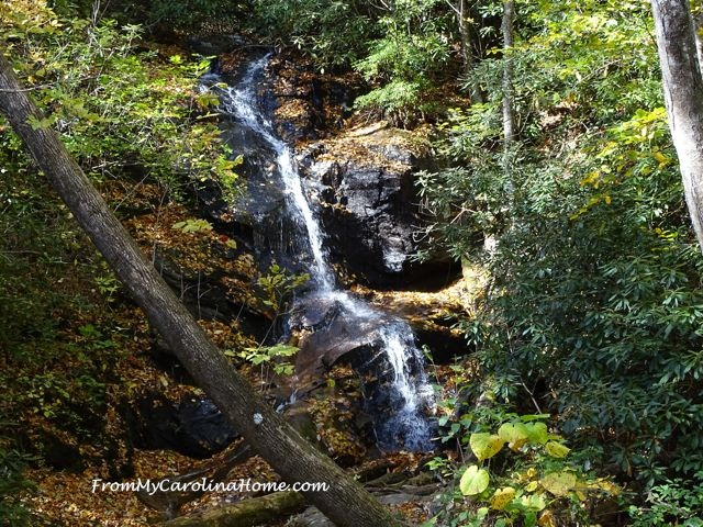 Log Hollow Falls 7