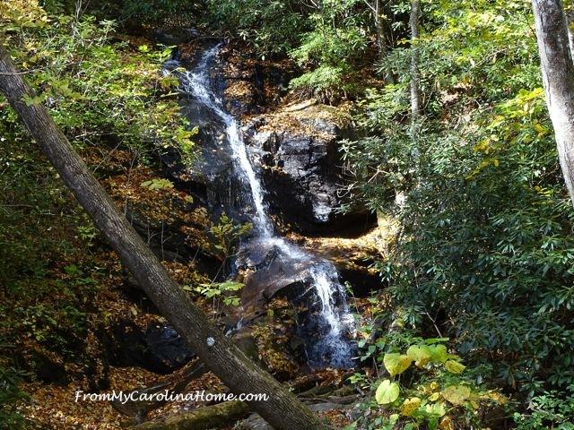 Log Hollow Falls 7