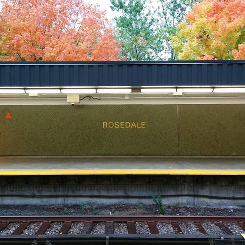 Looking across the tracks #toronto #fall #autumn #leaves #rosedale #ttc