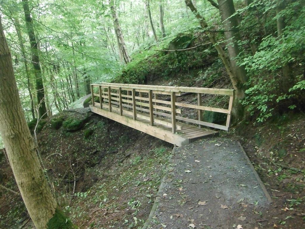Strid Wood 1