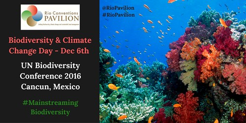 December 6 is Biodiversity and Climate Change Day at #COP13 (Mainstreaming Biodiversity) @RioPavilion #RioPavilion