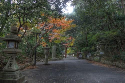 Isonokami Jingu Shrine on NOV 30, 2016 vol01 (1)