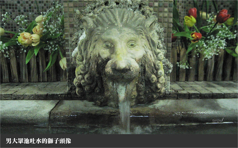 男大眾池吐水的石獅子頭像
