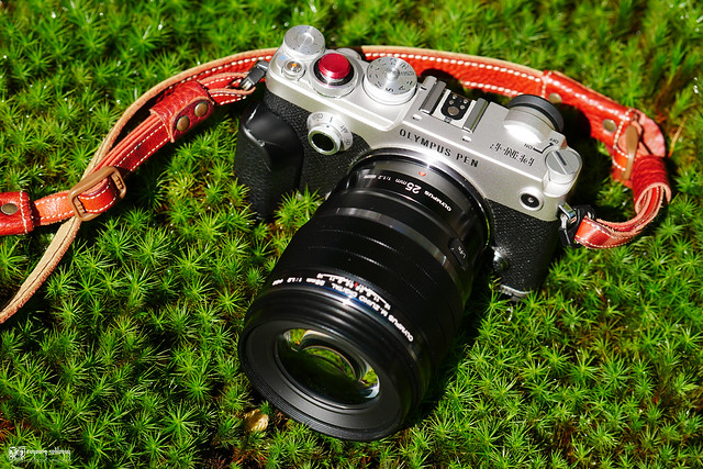 Olympus M.ZD 25mm F1.2 | 29