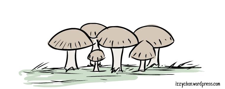 cluster of mushrooms