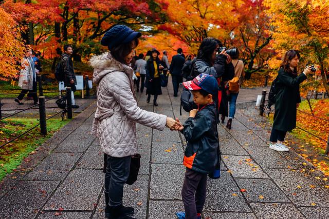 Kyoto_Eikando_10