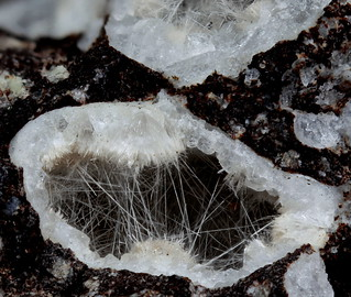 Zeolit nativ intr-o geoda. Aspectul macroscopic este de Clioptilolit