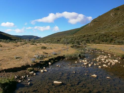 Río Carrión en el valle de Pineda
