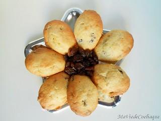 madeleine aux raisins secs madeleine aux pépites de chocolat sans gluten