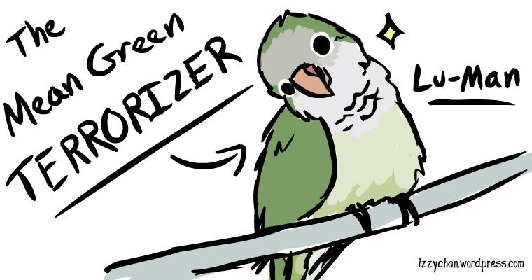 quaker parrot lu-man foster adopt