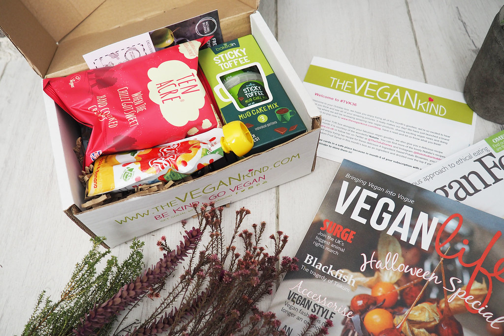 the vegan kind subscription box review 2