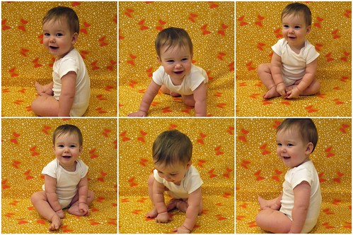 Nine Months Collage