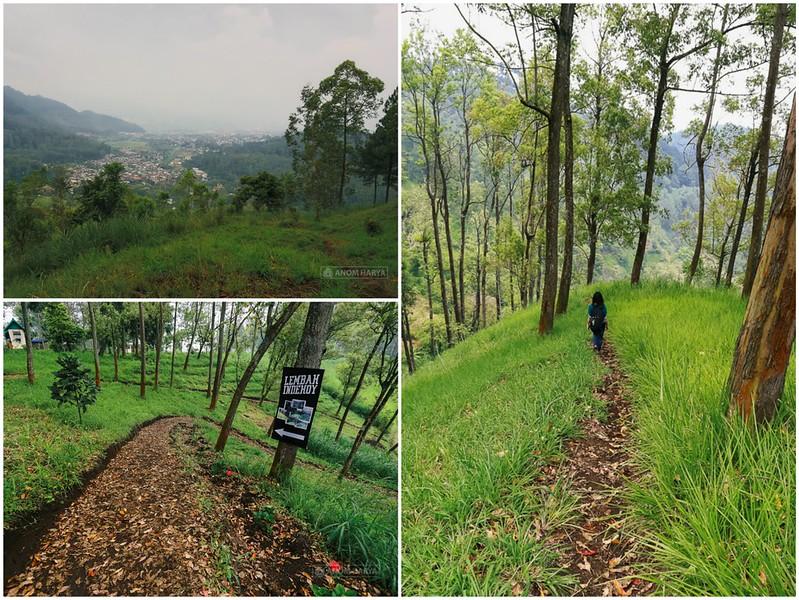 Lembah Indehoy di Coban Rondo