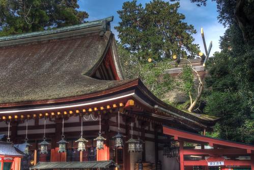 Isonokami Jingu Shrine on NOV 30, 2016 vol02 (13)