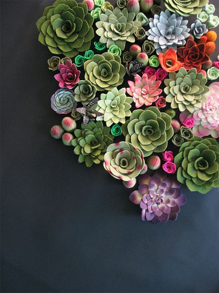 Succulents inspiration