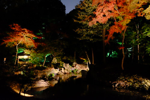 RIKUGIEN Colored Leaves light up 2016 06