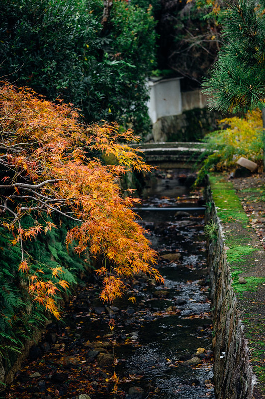 Kyoto_Nanzenji_101