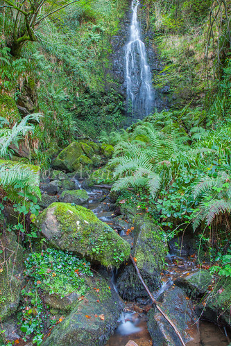 Parque Natural de #Gorbeia #DePaseoConLarri #Flickr      -1421