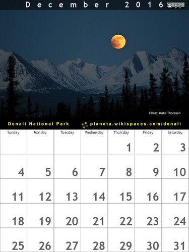 December 2016 Calendar: Denali National Park #FindYourPark @DenaliNPS