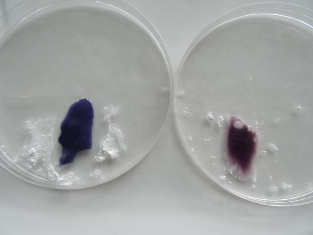 澱粉-碘液稀釋使用02