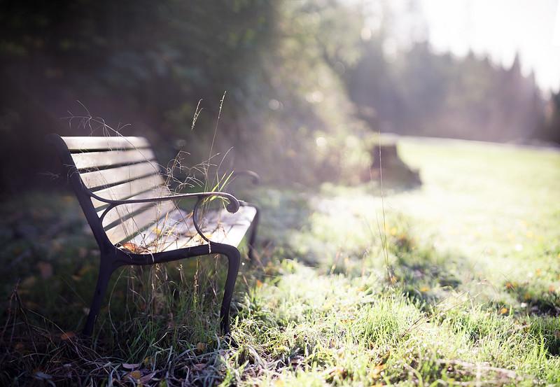 frosty bench
