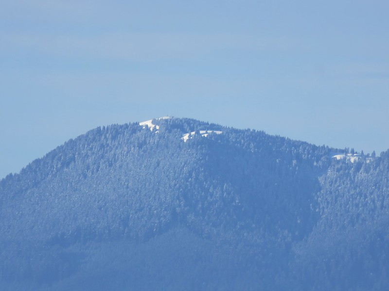 Mary's Peak from Dimple Hill