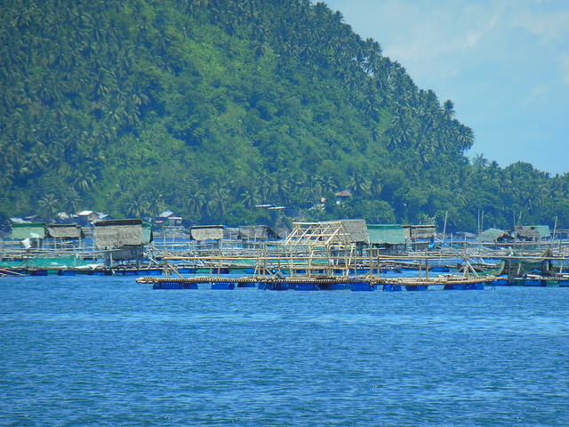 Mariculture, Barangay Waterfall Balingasag Misamis Oriental, Philippines. Photo by Idohna Buendia, WorldFish.