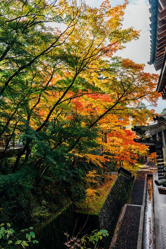 Kyoto_Eikando_12