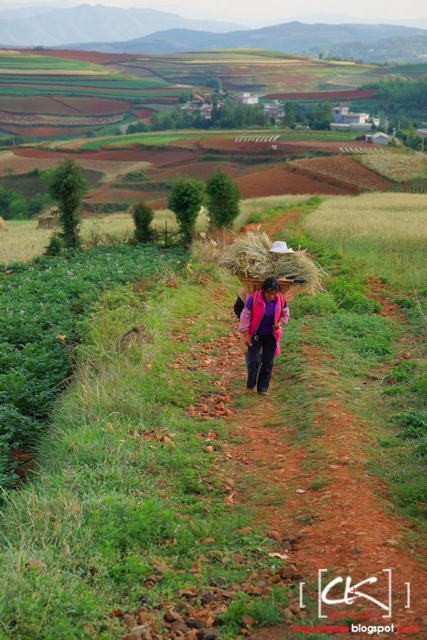 Yunnan_0091